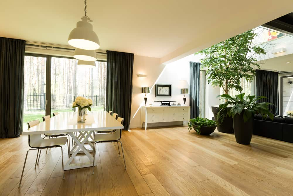 eco-friendly interior design - biophilic design